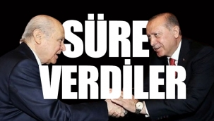 'Erdoğan ile Devlet Bahçeli yeni Anayasa konusunda anlaştı'
