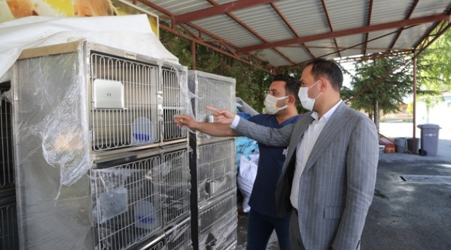 Niğde Belediyesi'nden Sokak Hayvanları İçin Yeni Yatırım